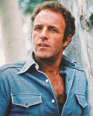 http://jaydeanhcr.files.wordpress.com/2011/04/james_caan1.jpg