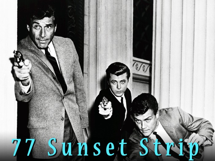 77-sunset-strip-18