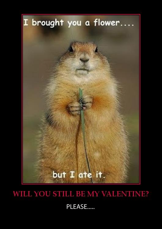 Be-my-valentine-funny-gopher-groundhog