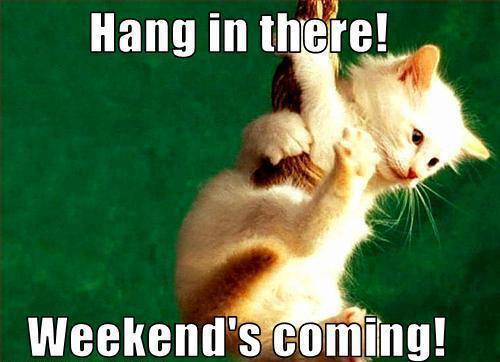 hang-in-there-weekends-coming-soon