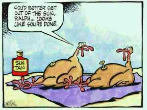 thanksgiving-funny-cartoon-turkey