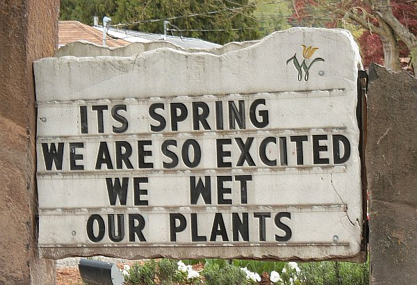 its-spring-we-are-so-excited-we-wet-our-plants