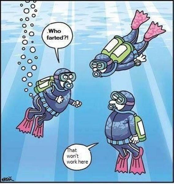 hilarious-cartoons