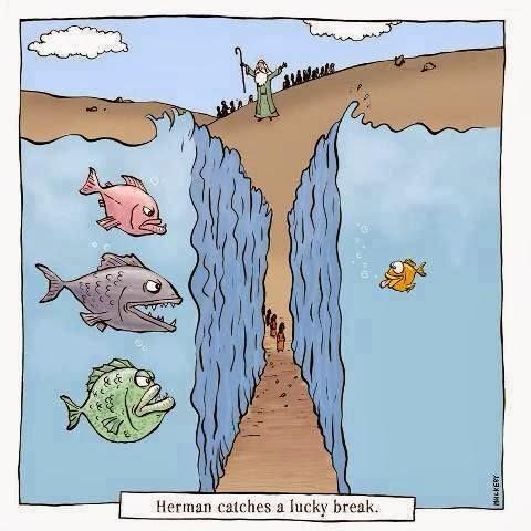 moses-red-sea-cartoon-fish-lucky-break