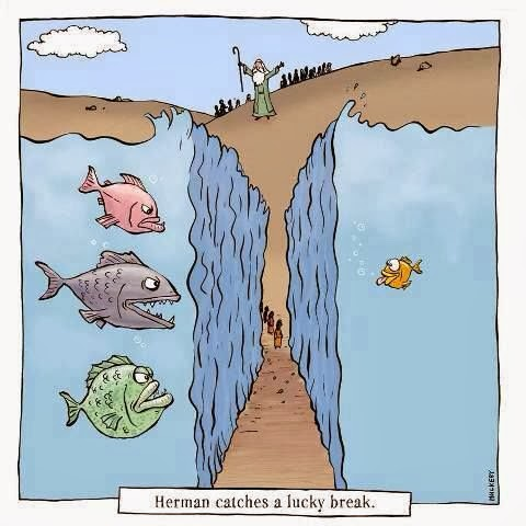 moses-red-sea-cartoon-fish-lucky-break