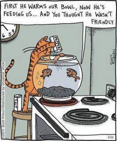 Hilarious-funy-cartoon