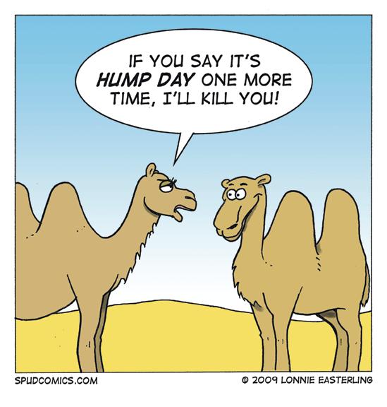 2009-08-26-hump