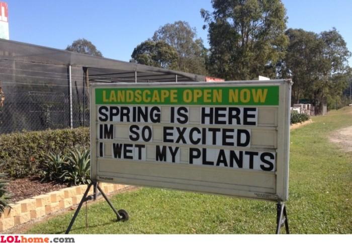 i-wet-my-plants