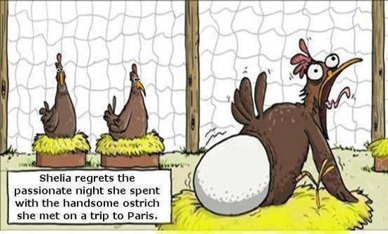 best-funny-humor-cartoon-joke