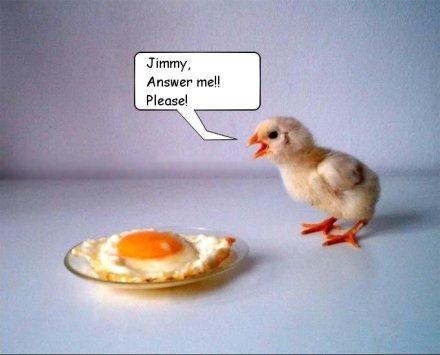 World's Most Funniest Animals Photos (2)
