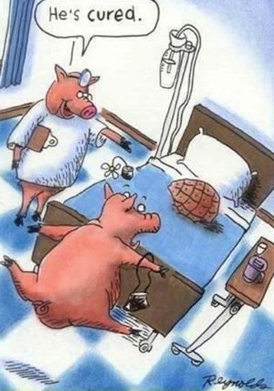 hilarious-cartoon-joke-34