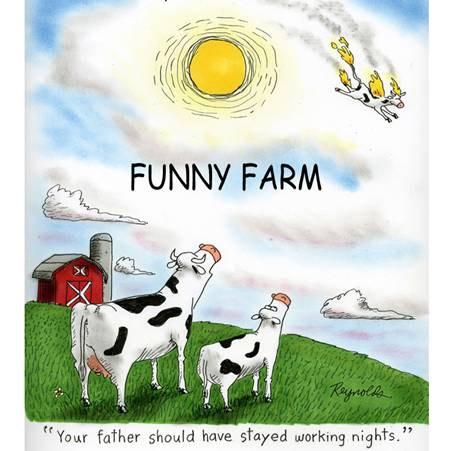 funny-farm-nights