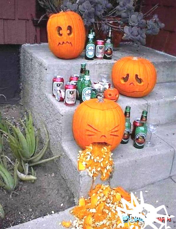 1-halloween Funny Pics
