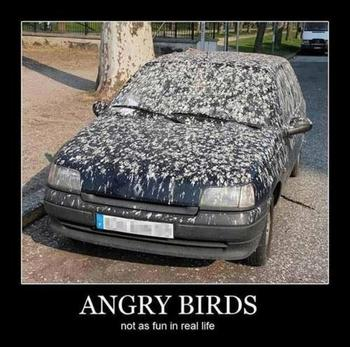 2410379155_Angry_Birds_Funnies_angry_birds_30418598_500_496_xlarge