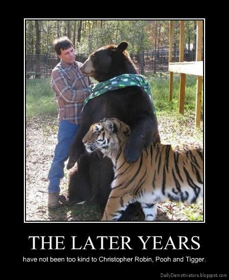 the-later-years-demotivational-poster