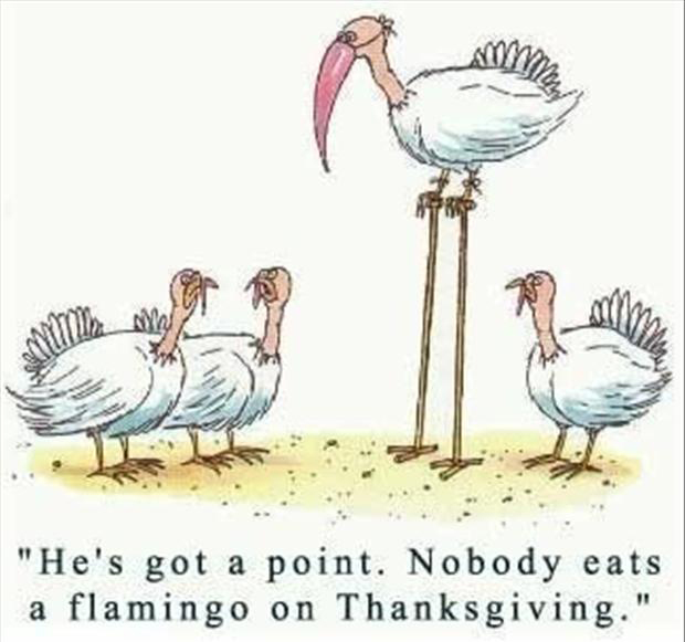 funny-thanksgiving-pictures-2