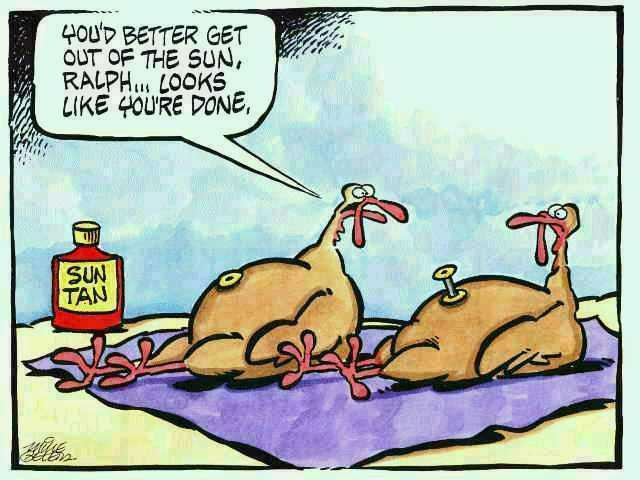 funny-thanksgiving-turkey-cartoon2