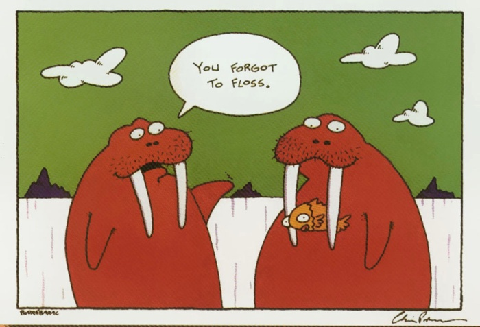 sulcus-dental-humor-forgot