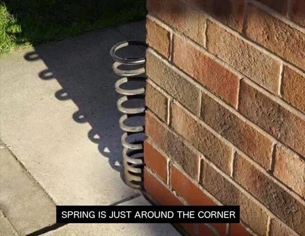 spring-is-just-around-the-corner