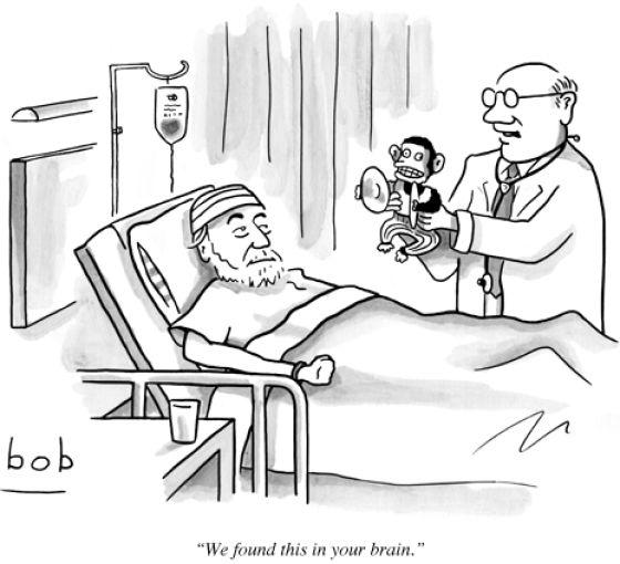 hilarious_new_yorker_comics_640_12